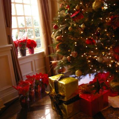 ¡La Guía de Regalos de Navidad 2011 ya Está Aquí!