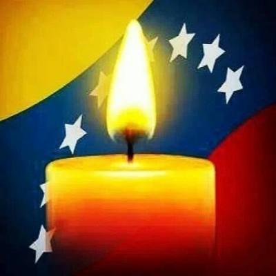 Manifestaciones Pacificas en el Mundo en Apoyo a Venezuela
