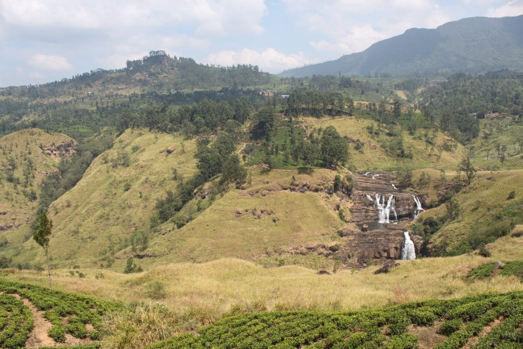 Tour Ceylon Tea en Sri Lanka