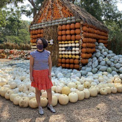 Llega el Otoño al Dallas Arboretum con su Exhibición de Calabazas